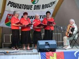 Powiatowe Dni Rodziny 2016- relacja zdjęcie przedstawia pięć osób dorosłych na scenie