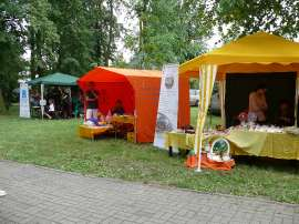 Powiatowe Dni Rodziny 2016- relacja_5zdjęcie przedstawia: trzy namioty wystawiennicze w parku