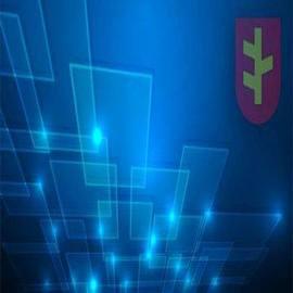 XII Sesja Rady Miejskiej w Rychwale